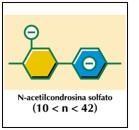Condroitinsolfato: razionale di utilizzo nell'artrosi