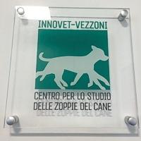 Nasce il centro Innovet-Vezzoni per lo studio delle zoppie del cane