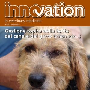 Una nuova innovation dedicata alle ferite
