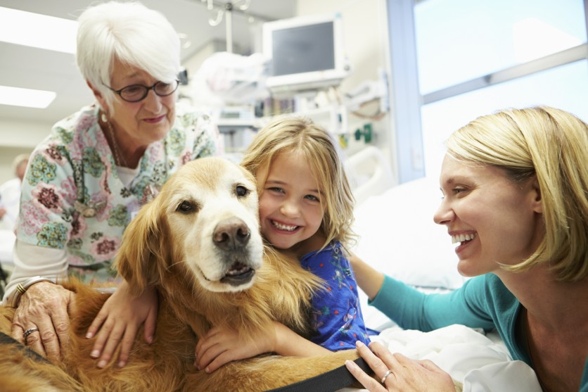 Pet therapy per bambini malati di tumore
