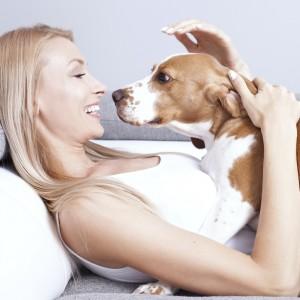 I cani ci leggono le emozioni in faccia