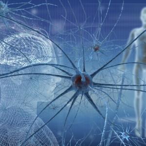 PEA-um efficace nella SLA (sclerosi laterale amiotrofica)