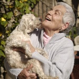 Signora anziana tine in braccio il suo cane