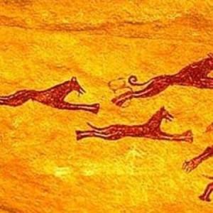 Il cane preistorico soffriva di artrosi