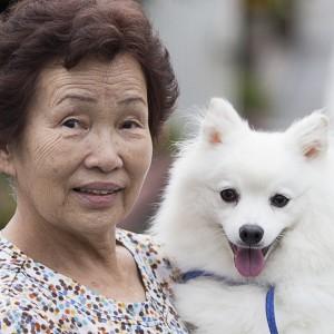Sono in Giappone i cani e i gatti più longevi