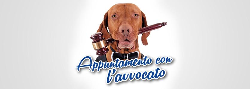 Consulenza legale gratuita per tutti i veterinari del VetExpo