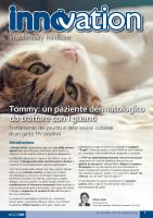 Tommy: un paziente dermatologico da trattare con i guanti. Trattamento del prurito e delle lesioni cutanee di un gatto FIV positivo