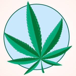 Luci e ombre della cannabis veterinaria