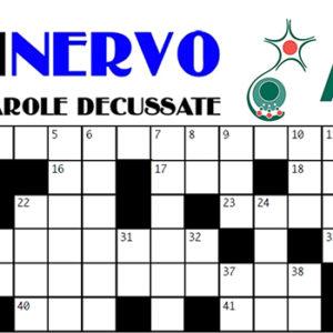 A Rimini giochiamo con il … CruciNervo