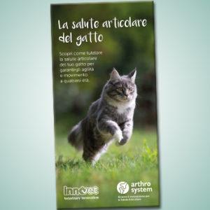 Una nuova guida per la salute articolare del gatto